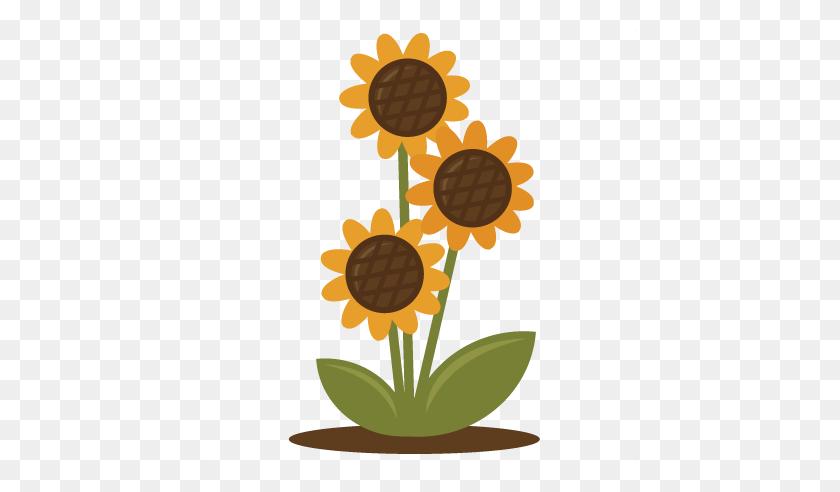 Mason Jar Sunflower Clipart Movieweb - Mason Jar Clip Art Free