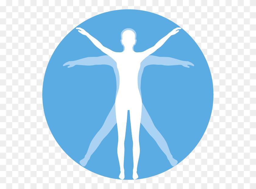 Massage Clipart Kinesiology, Massage Kinesiology Transparent Free - Massage Clipart
