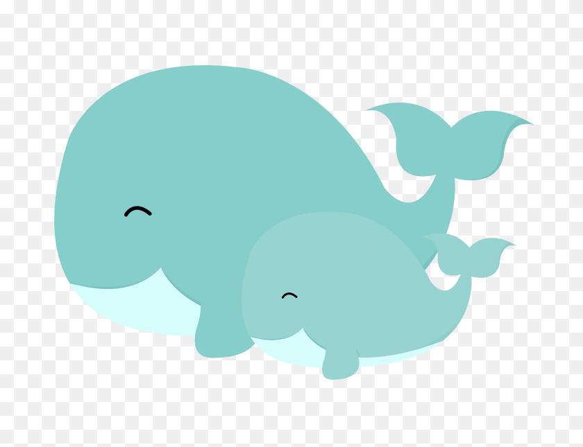 3156x2370 Mauve Clipart Whale - Argentina Clipart