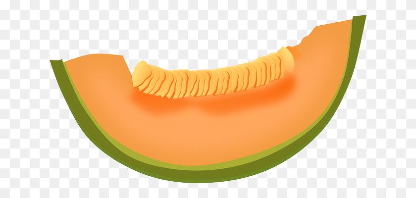 640x340 Melon Png Images Free Download - Melon PNG