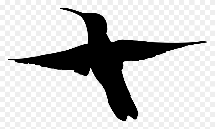 Mockingbird Clipart Black And White - Mockingbird Clipart