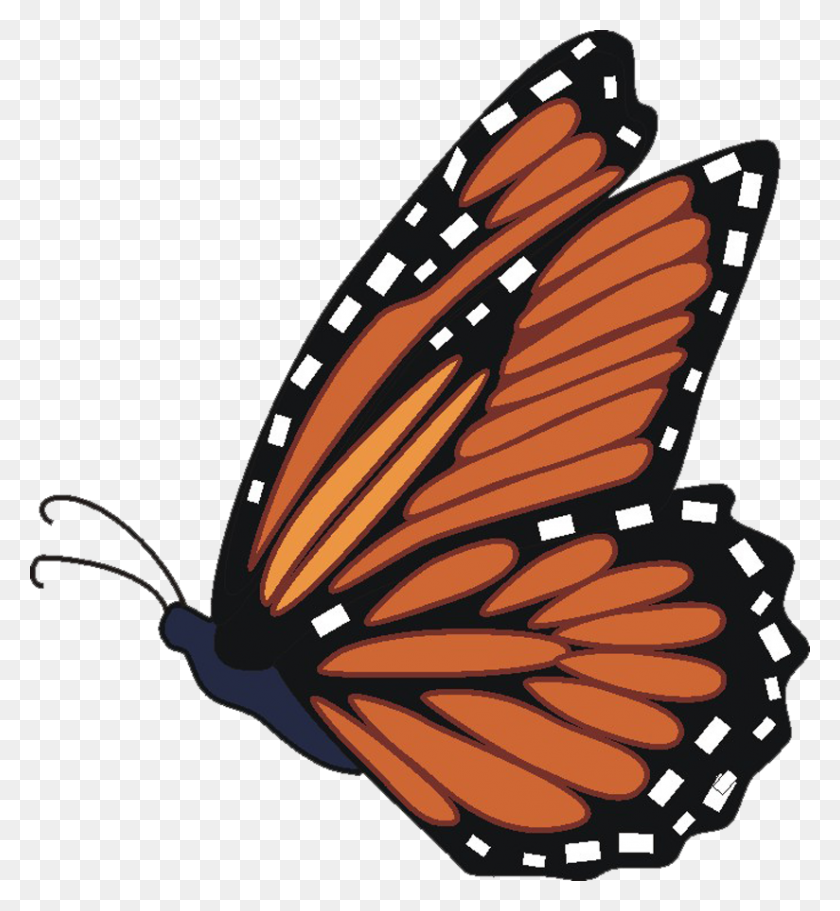 Monarch Butterfly Butterfly Pictures The Largest Free Butterfly - Migration Clipart
