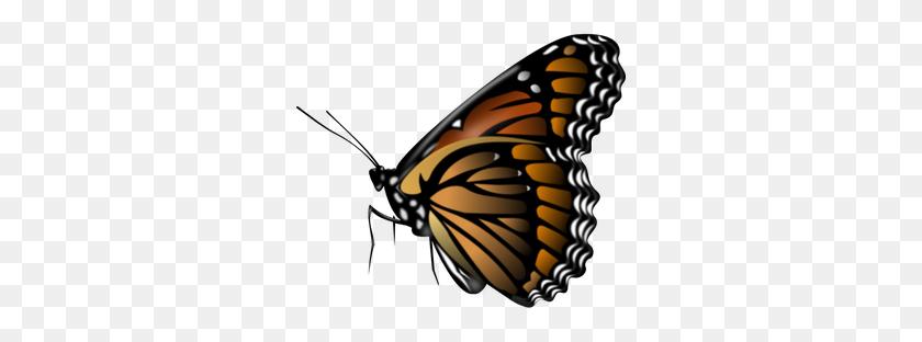 Butterfly Clip Art Sommerfugle - Gratis billeder på Pixabay