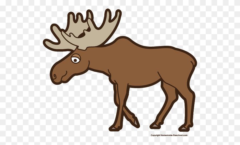 540x450 Moose Clipart Free - Moose Head Clipart