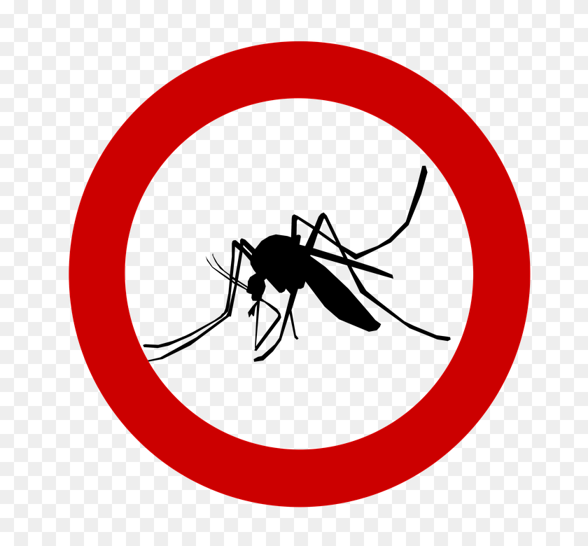 Software Bug Clip Art - Computer - Pest Control Clipart Black And White  Transparent PNG