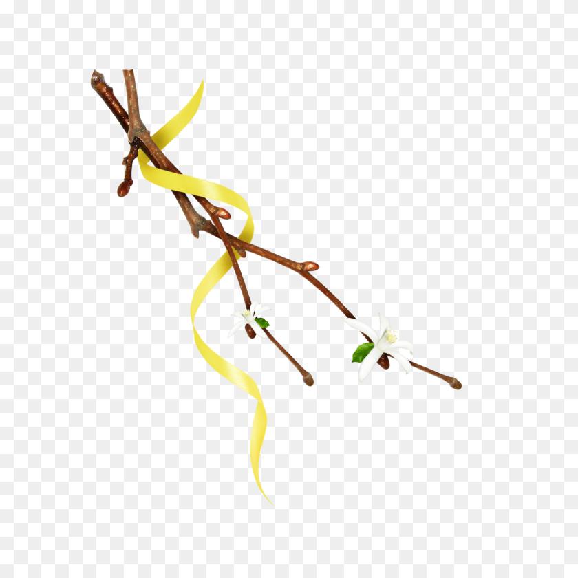 Mq Twig Twigs Leafs Leaf Leaves Nature Yellow - Twig PNG