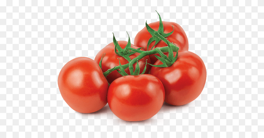 Mucci Farms - Tomatoes PNG