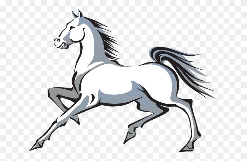 Mustang Horse Transparent Png - Mustang Horse PNG