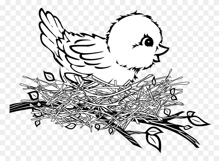 Nest Drawing Png Transparent Nest Drawing Images - Drawing PNG