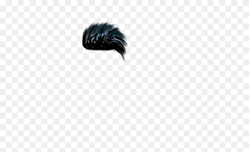 New Hd Cb Hair Png Zip Free Download Men Hair - Men Hair PNG