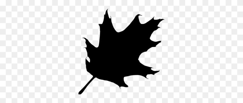 Oak Tree Silhouette Logo - Oak Tree Silhouette PNG