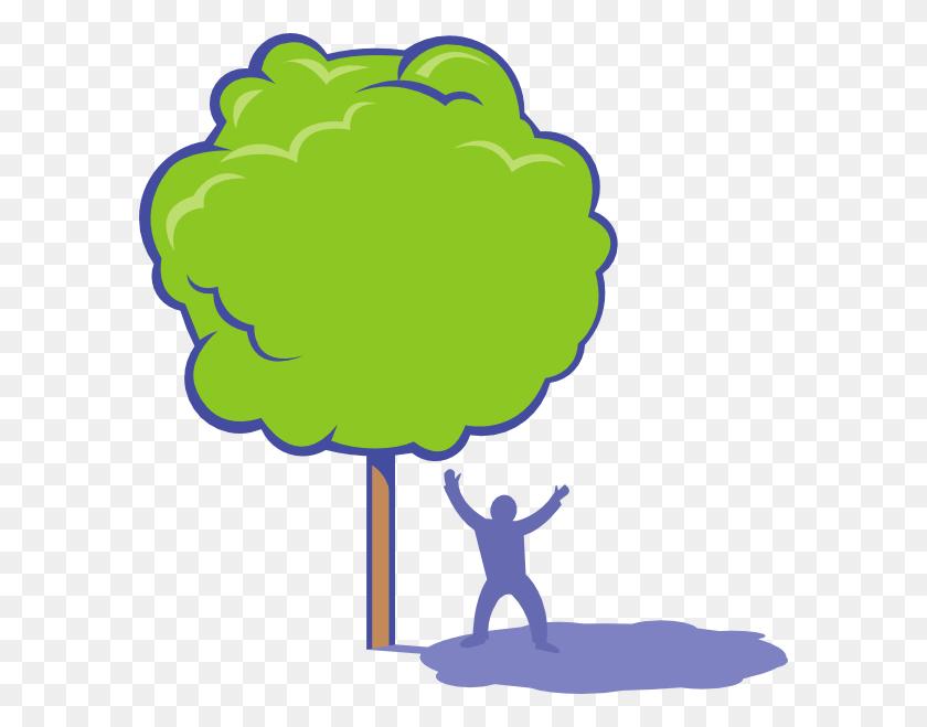 588x599 Oak Tree Silhouette Tree Silhouettes Cli - Oak Tree Silhouette PNG