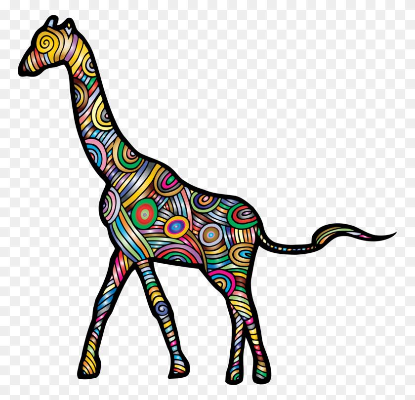 Okapi Northern Giraffe South African Giraffe Animal Drawing Free - Opossum Clipart