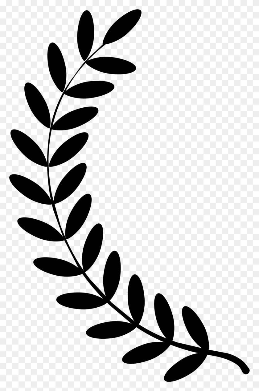 Olive Branch Cricut Laurel Wreath, Wreaths And Cricut - Olive Branch Clip Art