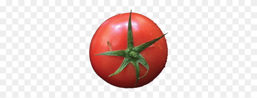One Of The Best Pizza Shops In Atlanta Pizza Atlanta Home - Tomatoe PNG