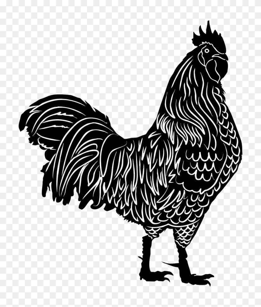 Onlinelabels Clip Art - Year Of The Rooster Clipart
