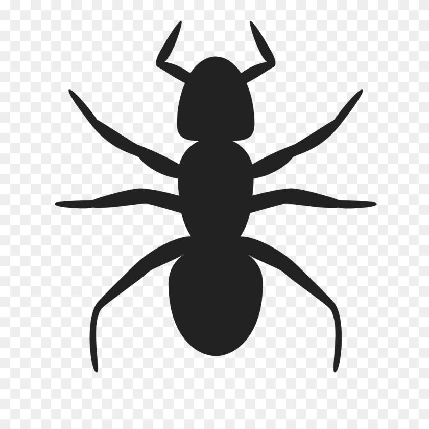 Onlinelabels Clip Art - Ant Clipart PNG