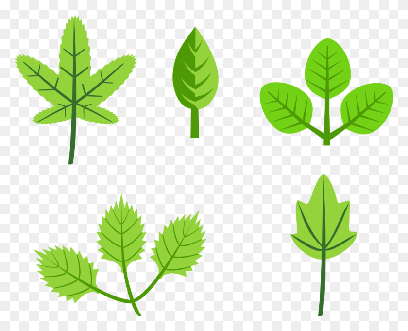 Onlinelabels Clip Art - Olive Leaf Clipart