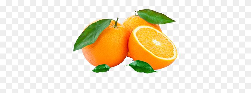 350x253 Orange Fruit Juice Benefits - Oranges PNG