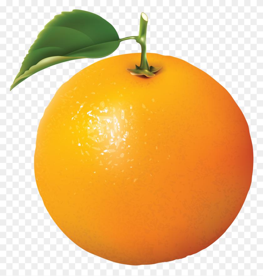 Orange Oranges Png Image - Oranges PNG