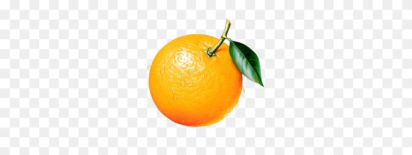 256x256 Orange Png Image Free Download - Oranges PNG