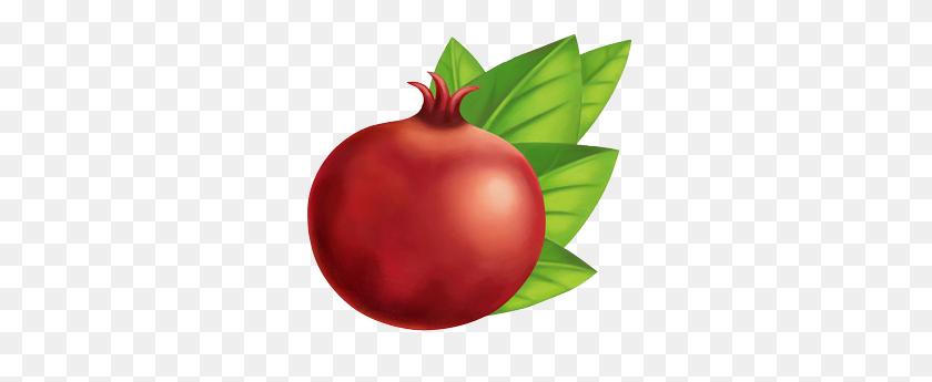 Organic Iced Teas With Just A Hint Of Sweetness I Kiju Organic - Pomegranate PNG