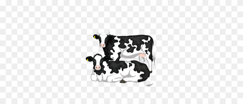 Our Process - Milking A Cow Clipart