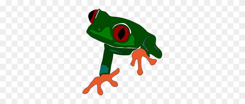 Over Rainforest Frog Clipart Cliparts Rainforest Frog - Rainforest PNG