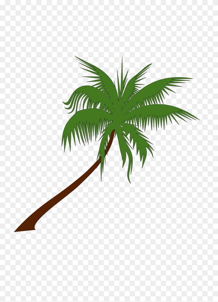 Palm Tree Clip Art Png - Trees Clipart PNG
