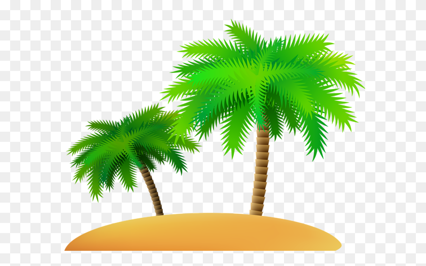 Coconut Palm Tree Png Palm Tree Png Transparent Stunning Free