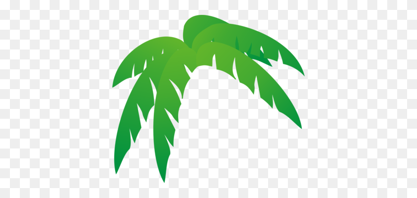 Palm Trees Palm Branch Palm Leaf Manuscript Frond - Banana Leaf PNG