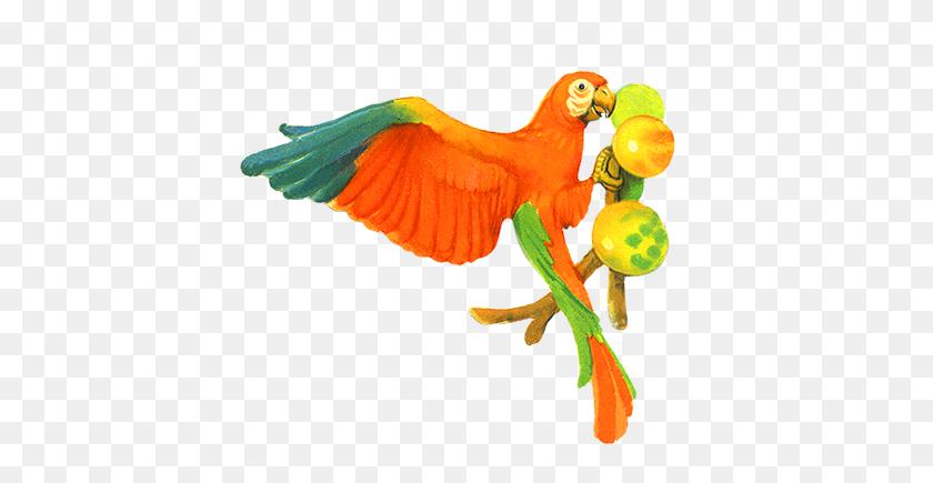 413x375 Parrot Clipart, Parrot Animals Clip Art Black - Parrot Clipart