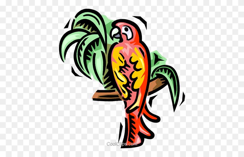 434x480 Parrot Royalty Free Vector Clip Art Illustration - Parrot Clipart