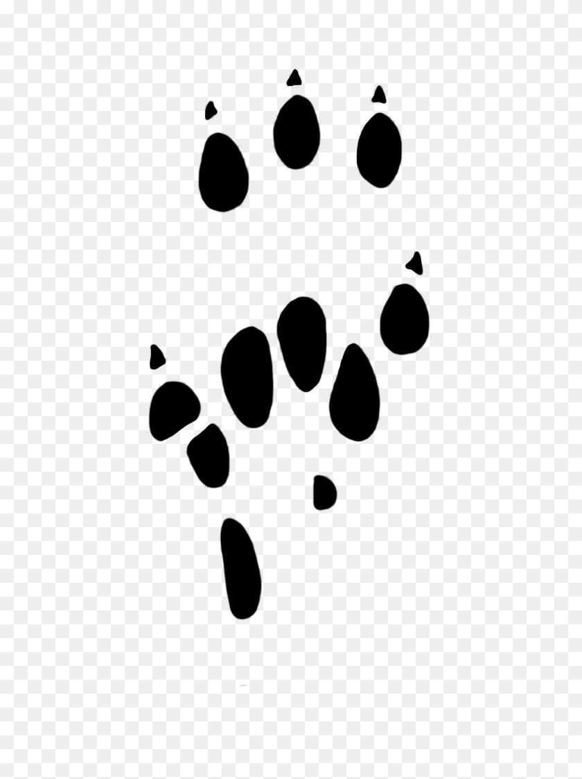 Paw Print Clipart Paw Print Clipart - Tiger Paw Print Clip Art