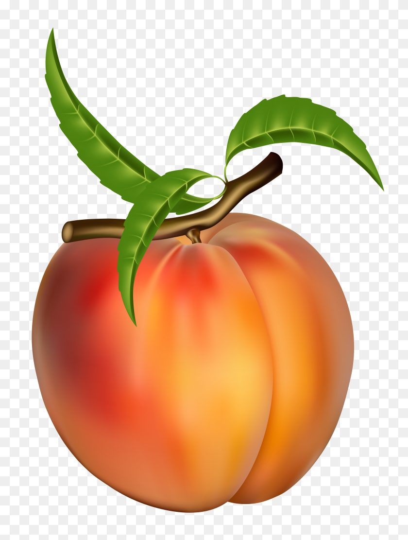 Peach Clipart Free Food Peach, Free And Clip Art - Orange Fruit Clipart