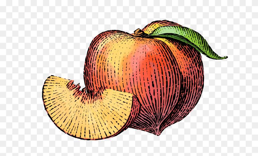 Peach Clipart Simple Fruit - Peach Clipart