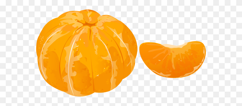 600x310 Peeled Mandarin Transparent Png Clip - Oranges PNG