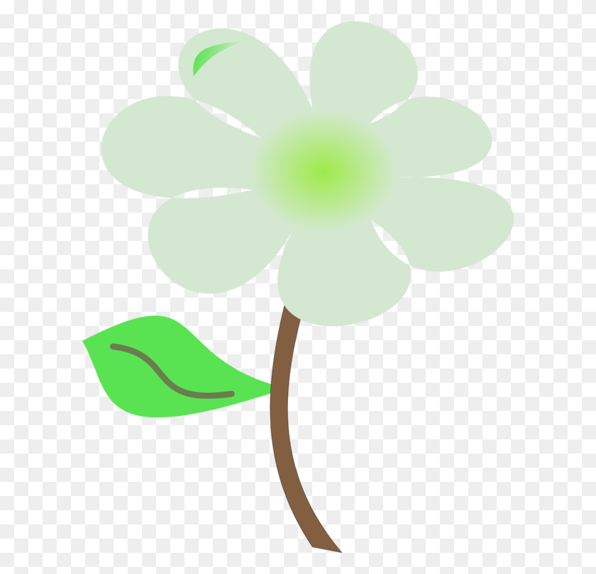 Petal Green Leaf Plant Stem Flowering Plant - Plant Stem Clipart