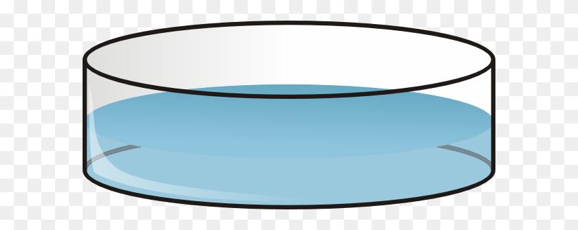 Petri Dish Clip Art Free Vector - Petri Dish Clip Art