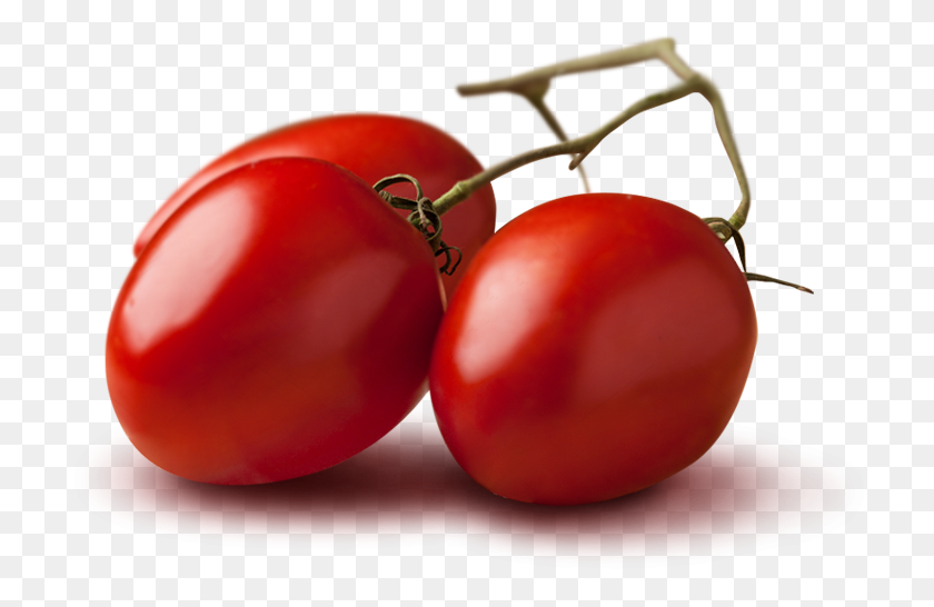Petti Tomato Is Tuscan Product - Tomatoes PNG