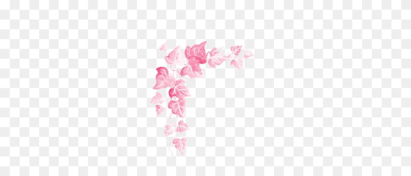 Picture Frames Pink Leaves - Corner Designs PNG