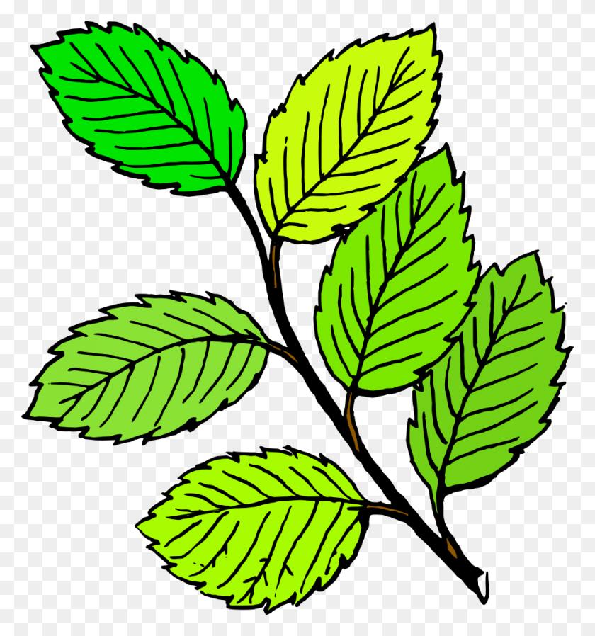 Pile Of Leaves Clip Art - Pile Of Leaves Clipart