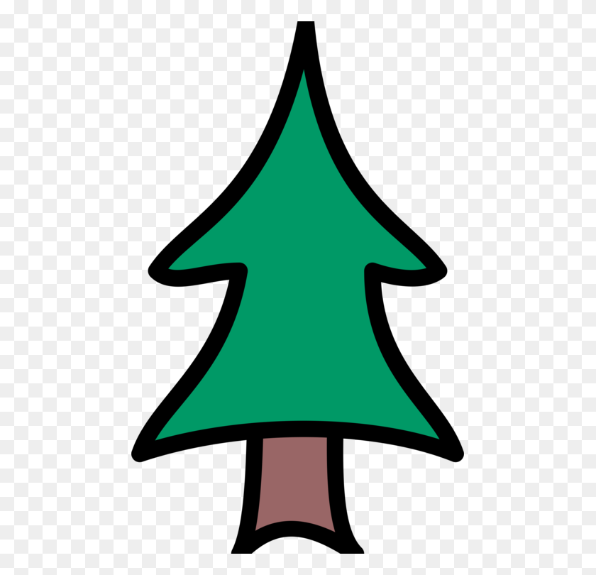 Pine Drawing Christmas Tree Conifers Pine Clipart