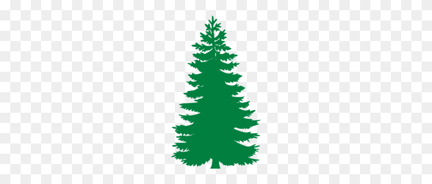 Pine Tree Clip Art - Trees Clipart PNG