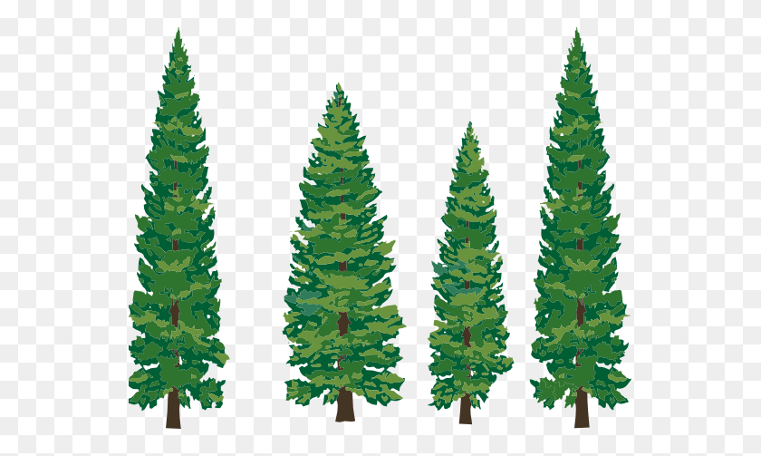 Pine Tree Clipart Png - Pine Tree PNG