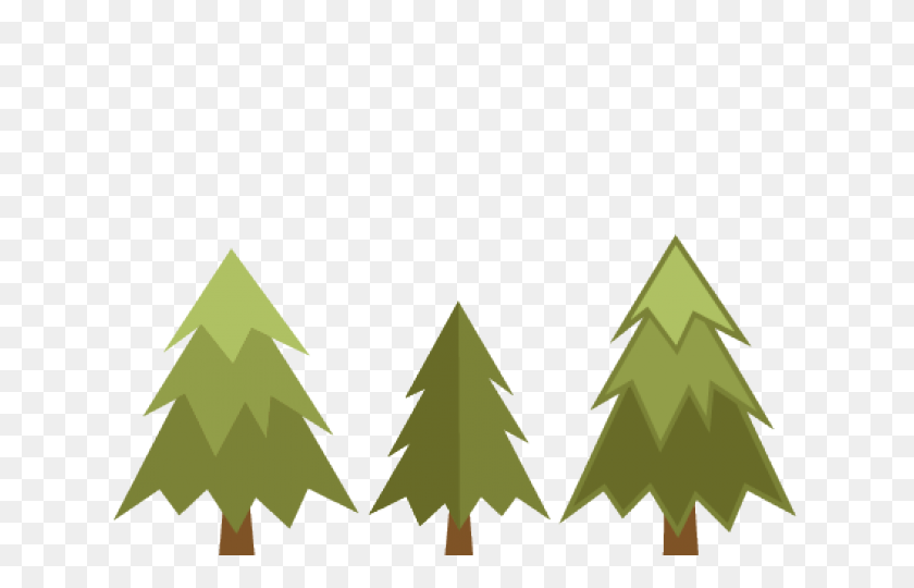 Pine Tree Clipart Transparent Background - Pine Tree PNG