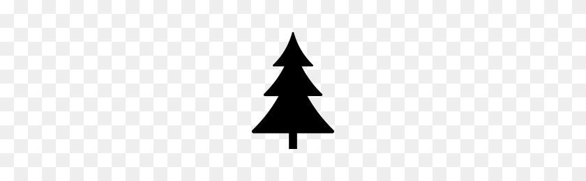 Pine Tree Icons Noun Project - Pine Tree PNG