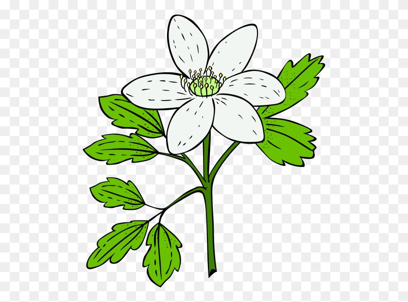 Plant Clipart Clip Art Plants Paint Clipart Tiny - Parts Of A Plant Clipart