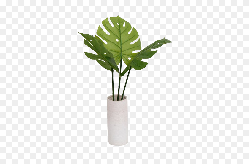 Flower Vase Hd Png Blogs Nature Wallpaper