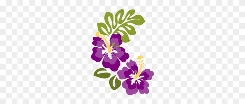 Plum Hibiscus Clip Hibiscus Clip Art, Luau - Raffle Clipart